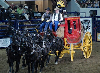 UCCS Alumni Night at the National Western Stock Show
