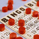 B-I-N-G-O, B-I-N-G-O, and Bingo was his name!