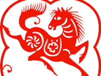 Chinese New Year Celebration: Year of the Horse