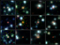 Tracing the gas and dust in dusty star-forming galaxies at high-redshift