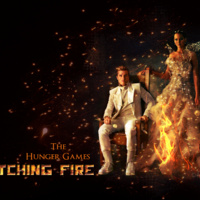 "Screening: ""Catching Fire"" (Two Showings)"
