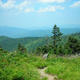 The Magical Natural History of the Smoky Mountains: A CAU Study Tour
