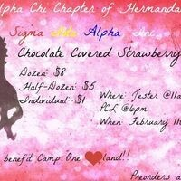 Chocolate Strawberry Sale by Hermandad de Sigma Iota Alpha