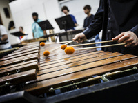 University Percussion Ensemble: Northern Nevada Day of Percussion