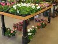 Horticulture Spring Plant Sale