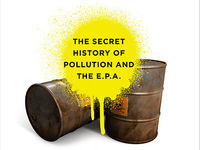 McKay Jenkins, Poison Spring: The Secret History of Pollution and the EPA