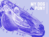 AIGA/NY @ Parsons Lecture Series: My Dog and Pony: Fresh Blood V