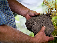 Keys to Soil Health Workshop - Marshall