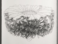 Shift and Collide: Drawings from Near and Far Exhibit
