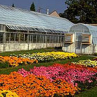 Greenhouses & Conservatory