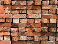 Clemson Brickmaking Project: Panel Discussion