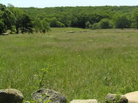 Tiasquam Valley Reservation Guided Walk