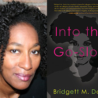 Bridgett M. Davis, Into the Go-Slow