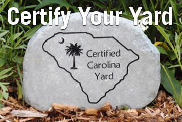 Green Gardening for a Carolina Yard