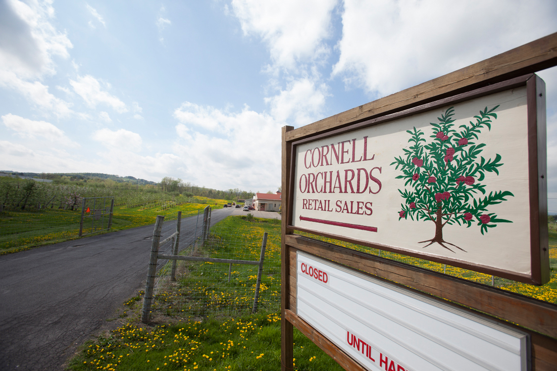 Cornell Orchards (Cornell AES)