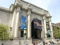Visit the American Museum of Natural History