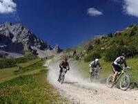 Crested Butte Mountain Biking Adventure