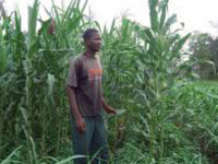 Push-Pull: Addressing Hunger, Gender, and Climate Change through Agricultural Science