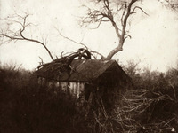 Collecting Shadows - Works by the Calotype Society