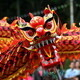 Parade of Nations and Chinese Dragon Dance