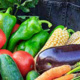 Nutrition and the Environment