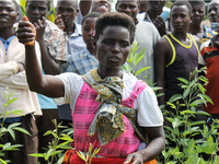 Farming for Change: Agroecology, Gender, and Climate Change Adaptation in Malawi and Tanzania