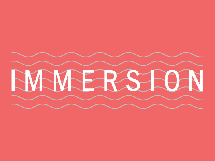 IMMERSION: Writers Working Career Panel