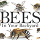 """Dr. Joe Wilson, """"Getting to know the bees in your backyard"""""""