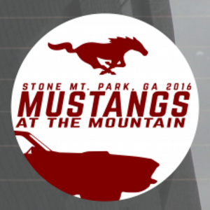 Mustangs at the Mountain