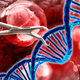 Splicing and Dicing DNA: Genome engineering and the CRISPR revolution
