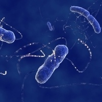 Decoding Cryptic Variation in the Human Microbiome