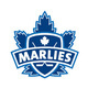 Toronto Marlies vs Syracuse Crunch