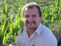 """""""Maize oxylipins are potent mediators in  symbiosis and defense"""" - Michael Kolomiets"""
