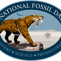 National Fossil Day Celebration at TMM