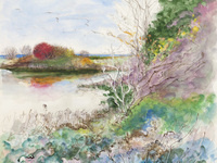 Christy Bergland 