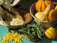 Cultures and Cuisine: Cooking with the Three Sisters