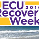 What is Recovery?