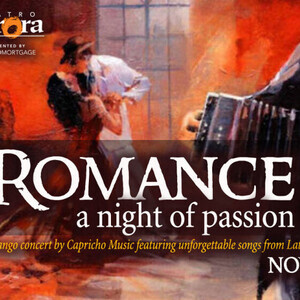 Romance: A Night of Passion