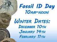 Fossil ID Day