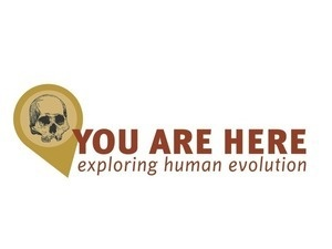 You Are Here: Exploring Human Evolution