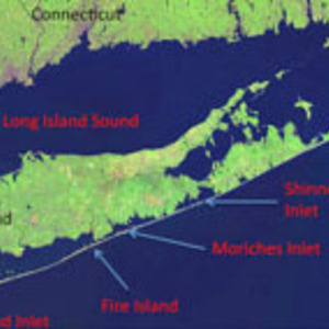 NASC Colloquium: Global Mismanagement of Barrier Islands in the Anthropocene: A Fire Island Perspective
