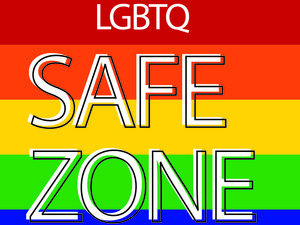 The Safe Zone Project: Phase II
