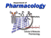 Pharmacology Postdoctoral Workshop - Kathleen Markan, Ph.D.