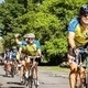 Bike MS: Ride The Rhode 2017