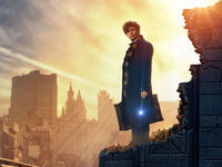 CAB Presents: Fantastic Beasts and Where to Find Them