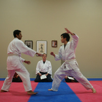 Aikido self-defense practice