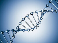 OCGS February Meeting: What can DNA tell you