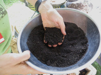 Master Composter volunteer training