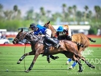 Sunday Polo at Eldorado Polo Club