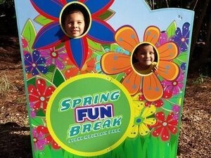 Stone Mountain Park's Spring FUN Break